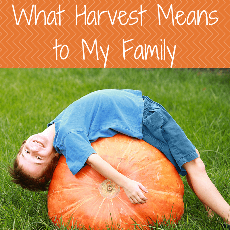 What Harvest Means to My Family